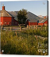Red Farm Acrylic Print