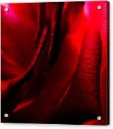 Red Petal Macro 3 Acrylic Print