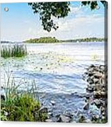 Reeds And Dnieper River Acrylic Print