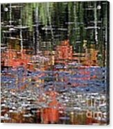 Reflecting Fall Acrylic Print