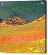 Rock Art In Oregon Acrylic Print