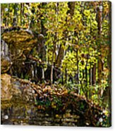 Rock Shelf And Forest Acrylic Print