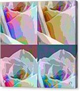 Rose Four Acrylic Print