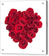 Rose Heart Acrylic Print by Elena Elisseeva