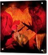 Rose Heart Acrylic Print