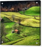 Rural Life Acrylic Print