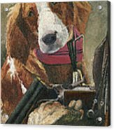 Rusty - A Hunting Dog Acrylic Print