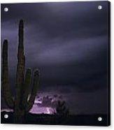 Saguaro Cactus Sunset At Dusk With Lightning Arizona State Usa Acrylic Print