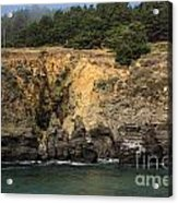 Salt Point Cliffs Acrylic Print