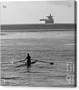 Sculling On The Bay Acrylic Print