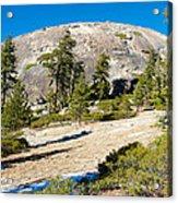 Sentinel Dome From Sentinel Dome Trail In Yosemite Np-ca  Acrylic Print