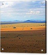 Serengeti Landscape Acrylic Print