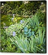 Shady Garden Acrylic Print