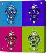 Skulls In Quad Colors Acrylic Print