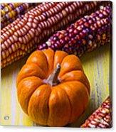 Small Pumpkin And Indian Corn Acrylic Print