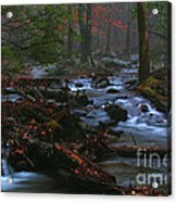 Smoky Mountain Color Acrylic Print