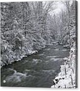 Snow Covered Pine Trees On The Side Of A River In The Winter. Acrylic Print