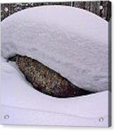 Snowviews Acrylic Print