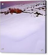 Soft Snow At Sunset Acrylic Print