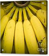 Some Fresh Bananas On A Street Fair In Brazil.. Acrylic Print