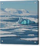 South Of The Antarctic Circle Acrylic Print