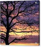 Spectacular Sunset Epsom Downs Surrey Uk Acrylic Print