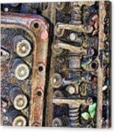 Spinal Column Acrylic Print