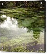 Spring Water Acrylic Print