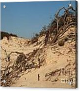 St Joseph Sand Dunes Acrylic Print