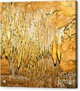 Stalactite Formations In Florida Acrylic Print