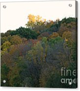 Stand Above Acrylic Print