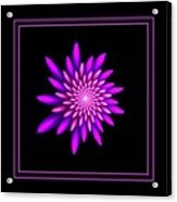 Starburst-32 Framed Black And Pink Acrylic Print