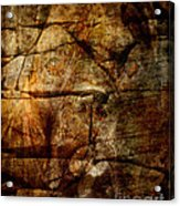 Stone Wall Acrylic Print by Judy Wood