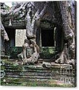 Strangler Fig Tree Roots On Preah Khan Temple Acrylic Print