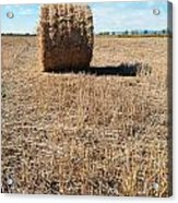 Straw Bales At A Stubbel Field Acrylic Print
