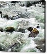 Stream Great Smoky Mountains  Acrylic Print
