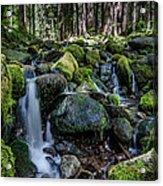 Sul Duc Creek Acrylic Print