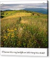 Summer Morning Sunlight On Little Hump Mountain Acrylic Print