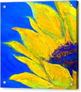 Sunflower In Blue Acrylic Print