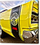 Super Close Super Bee  Acrylic Print