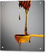 1 T. Honey Acrylic Print