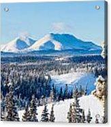 Taiga Winter Snow Landscape Yukon Territory Canada Acrylic Print