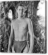 Tarzan The Ape Man, Johnny Weissmuller Acrylic Print