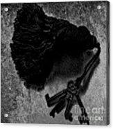 Tassled Vintage Skeleton Keys Acrylic Print