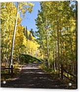 Telluride Colorado Fall Acrylic Print by Michael J Bauer