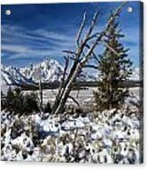 Tetons In The Distance Acrylic Print