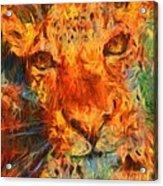 That Cat Acrylic Print