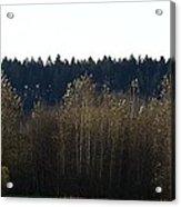 The Back Acres Acrylic Print