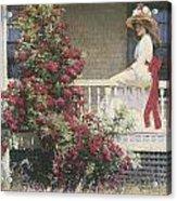The Crimson Rambler Acrylic Print by Philip Leslie Hale