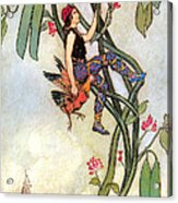 The Fairy Book Acrylic Print